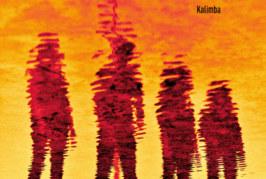 """Musique: Découvrez ANIMEITID avec son titre """"Kalimba"""""""