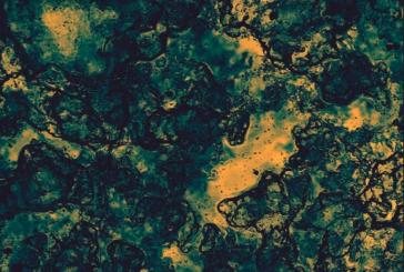 """Musique: Human Pattern  : Découvrez son premier EP """"Excavation"""""""