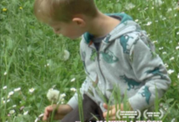 Documentaire: Le Bon Grain De L'Ivraie de Manuela Frésil