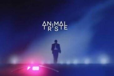 Animal Triste – Premier Album & Nouveau clip !